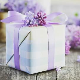 Акция «Курс в подарок»