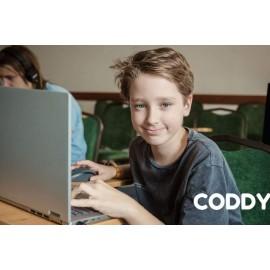 Сотрудничество со школой программирования